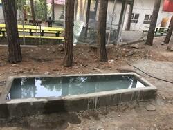 ساخت آبشخور برای حیوانات در جنگل سرخهحصار