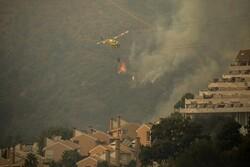 İspanya'daki yangınlarda 6 bin hektardan fazla alan kül oldu