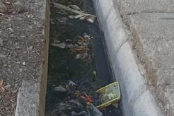 آلودگی جداول شهر دوگنبدان/  خطر بروز بیماری در برخی محلات