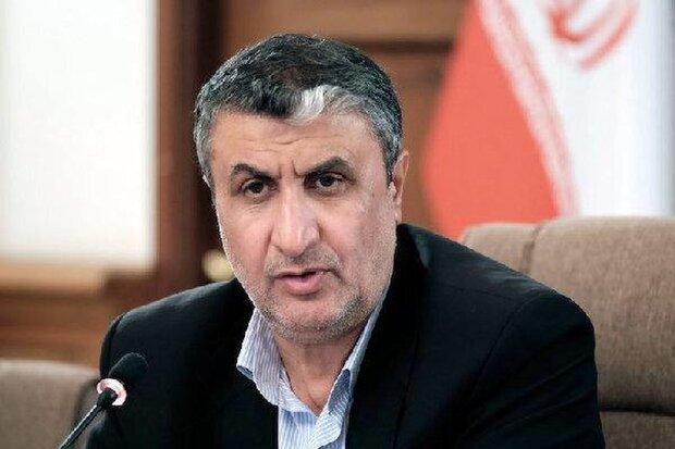 İran Atom Enerjisi Kurumu Başkanı Viyana'da