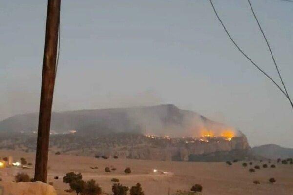 آتش در جنگلهای کوه نیر دوباره شعله ور شد/ نابودی دهها هکتار جنگل