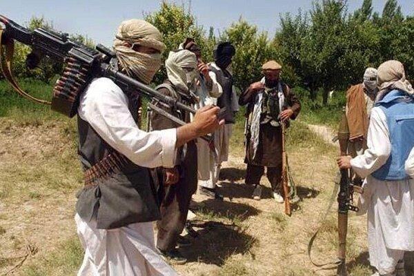 ارتش پاکستان حداقل ۵ تروریست را از پای درآورد
