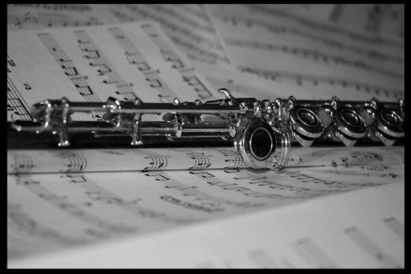 شنیدن قطعات شش آهنگساز معاصر ایرانی/ موسیقی و هویت ایرانی چیست؟