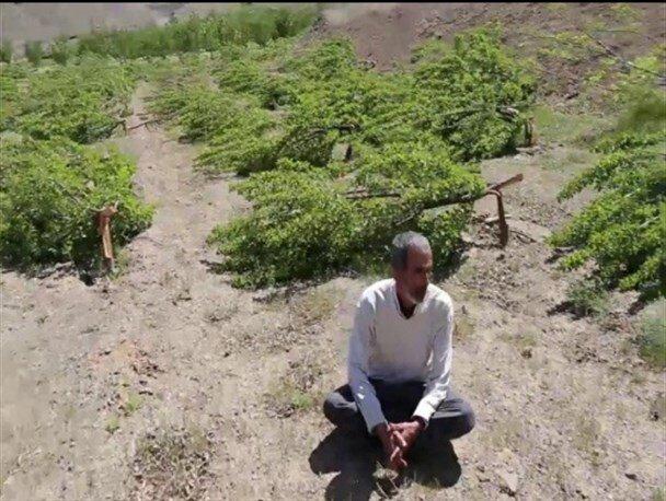 6 ماه از تخریب باغ کشاورز سنندجی بدون تحقق وعدهها گذشت