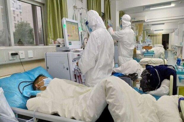 بستری ۵۱ بیمار کرونایی در استان بوشهر/ ۸۰ نفر ترخیص شدند