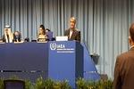 بین الاقوامی ایٹمی ایجنسی کو اپنا استقلال محفوظ رکھنا چاہیے/ ایران با مقصد مذاکرات کا خواہاں