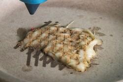 پخت دقیق غذای چاپ سه بعدی با لیزر!