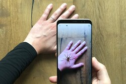 تولید اپلیکیشن واقعیت افزوده برای مقابله با ترس از عنکبوت