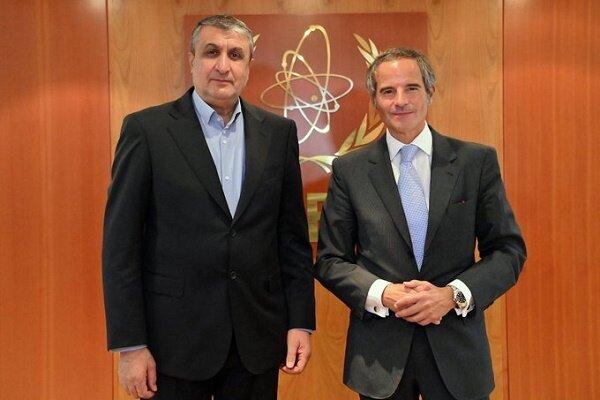 مدیرکل آژانس از دیدار با رئیس سازمان انرژی اتمی ایران استقبال کرد