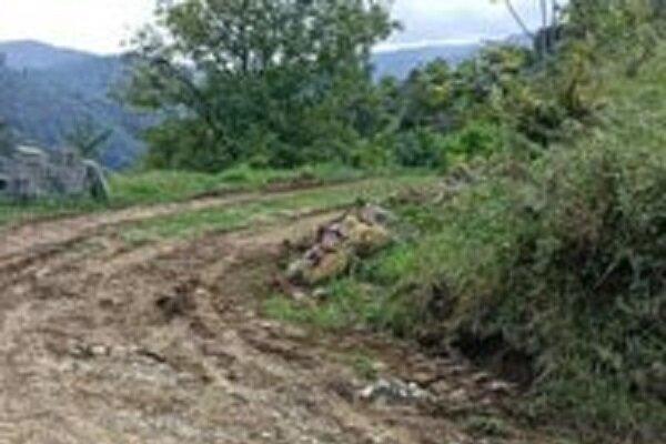 معرفی متصرف ۶ هزار متر از زمین های جنگلی رودسر به مراجع قضایی
