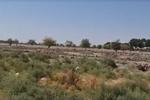 بلاتکلیفی ۵۰۰ هکتار از اراضی مرغوب کشاورزی در شهریار