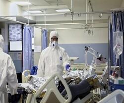 تسجيل 239 حالة وفاة جديدة بكورونا