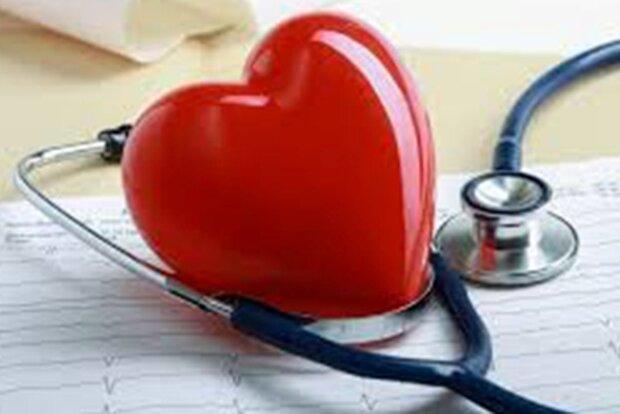 آموزش همگانی نقش مهمی در کنترل بیمارهای قلبی عروقی دارد