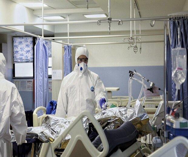 تسجيل 289 حالة وفاة جديدة بكورونا