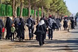 جاماندگان در مسیرهای ارادت/ مردم قومس با زائران کربلا همراه شدند