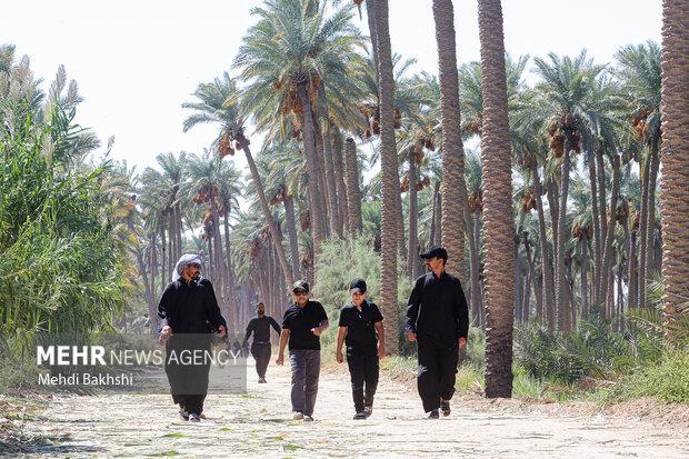 پیاده روی زائران اربعین در «طریق العلما»