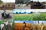 کشاورزی بازارمحور جایگزین کشاورزی تولید محور خواهد شد؟/ نگاهی به تجربه کشورهای در حال توسعه