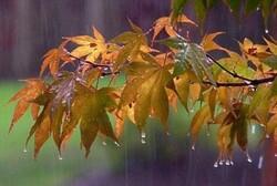 باران پاییزی در راه است/کاهش دما و بارش تا روز جمعه در اردبیل