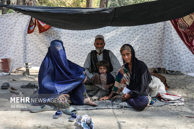 يك خانواده اهل ولايت تخار كه به علت جنگ در شمال افغانستان بيش از دو ماه است كه در پارك شهر نو در مركز كابل اقامت دارند. اين خانواده به همراه خانواده هاى ديگر در اين كمپ، هزينه بازگشت به شهر خود را ندارند