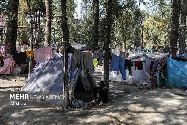 نمايى از كمپ مهاجرين در پارك شهر نو در كابل. بيشتر خانواده ها در اين كمپ هزينه بازگشت به شهر خود را ندارند