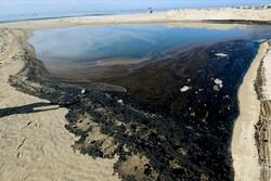 نشت نفتی بزرگ ساحل «هانتینگتون» کالیفرنیا را آلوده کرد