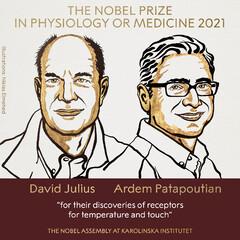 برندگان نوبل پزشکی ۲۰۲۱ اعلام شدند