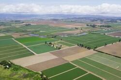 انتقال سند ۴۰ هکتار از اراضی ملی جوچی به مدعیان مالکیت متوقف شد