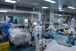 Iran COVID-19 update: 11,625 new cases
