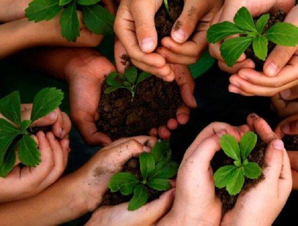 ضرورت اجماع جهانی برای غلبه بر زوال و نابودی تنوع زیستی