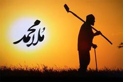 پرتره «ملامحمد» روی آنتن میرود/ پیرمرد ۹۰ ساله که همه کاره است
