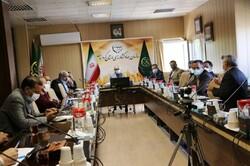 اجرای طرح جهش تولید در ۱۴ هزار و ۳۰۰ هکتار از اراضی کردستان