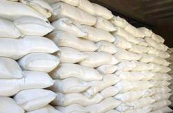بیش از ۱۴ هزار تن آرد در روستاهای استان قزوین توزیع شد