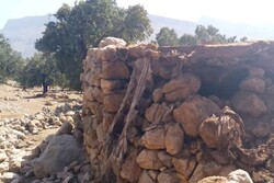 بعضی از روستاهای اندیکا کاملاً تخریب شدند/ اولویت با اسکان موقت