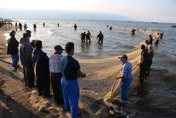 تلاش صیادان گیلانی برای کسب روزی از دریا در نخستین روز فصل صید