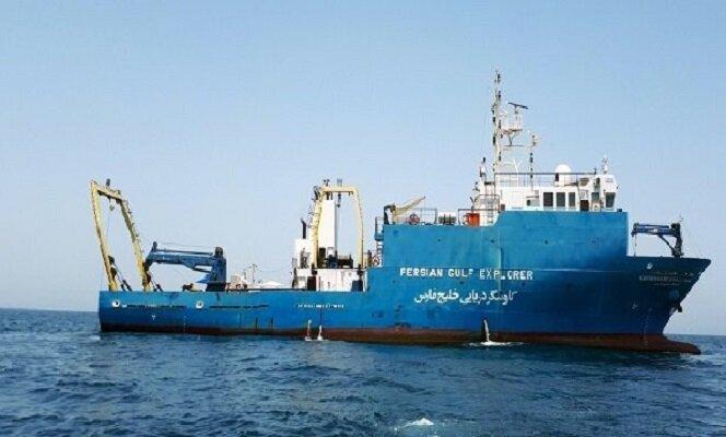 فراوانی پستانداران دریایی در دریای عمان بیشتر از خلیج فارس است