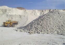 خاک دزدی در شرق اصفهان/ ۸۴ تن چوب و زغال بلوط کشف شد