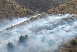 وقوع ۴ حریق در منابع طبیعی شاهرود/ ۴ هکتار در آتش سوخت