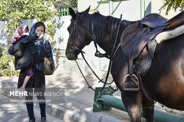 یک مادر وفرزند در مراسم رژه اقتداری یگان اسب سوار حاضر هستند