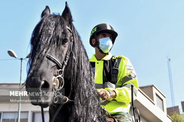 یک سرباز اسب سوار یگان ویژه نیرو انتظامی .