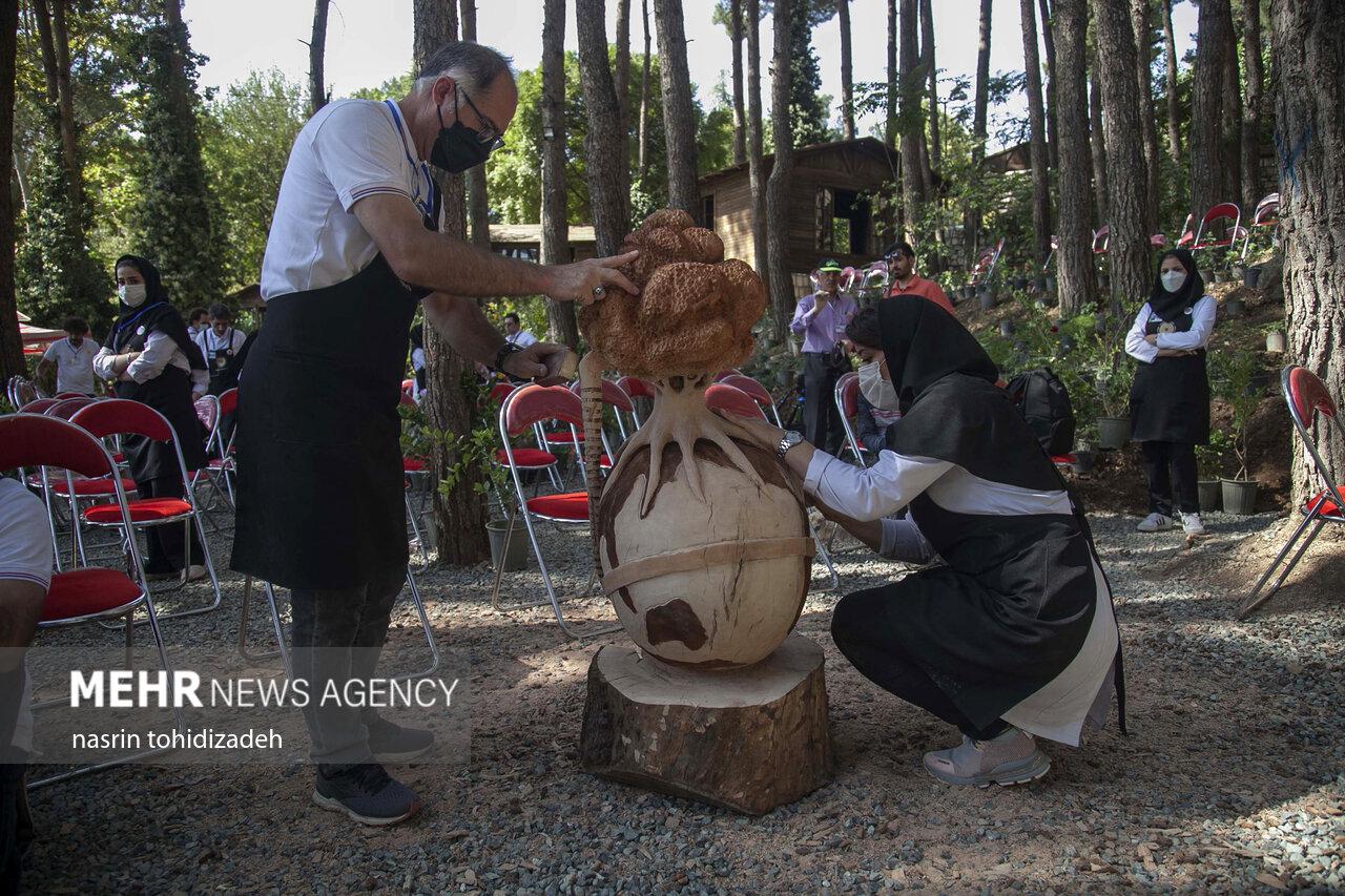 رویداد منطقهای ۲۰۲۱ روز جهانی چوب به میزبانی کرمانشاه