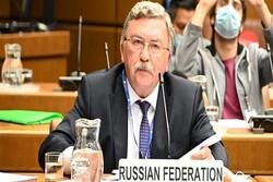 Talks in Brussels not substitute for Vienna talks: Ulyanov