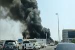 وقوع آتش سوزی در منطقه صنعتی «جبل علی» امارات