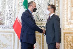 Iran's Amir-Abdollahian, Venezuela's Plasencia hold meeting