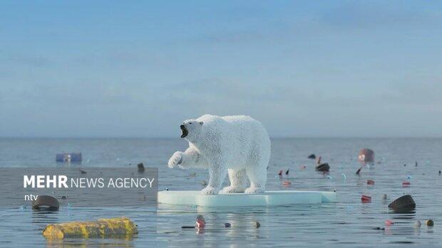 خطر آب شدن یخهای قطب شمال تا سال ۲۰۴۰