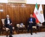 ایرانی وزیر خارجہ امیر عبداللہیان  کا بیرون ملک فارسی زبان کو فروغ دینے کے عزم کا اظہار