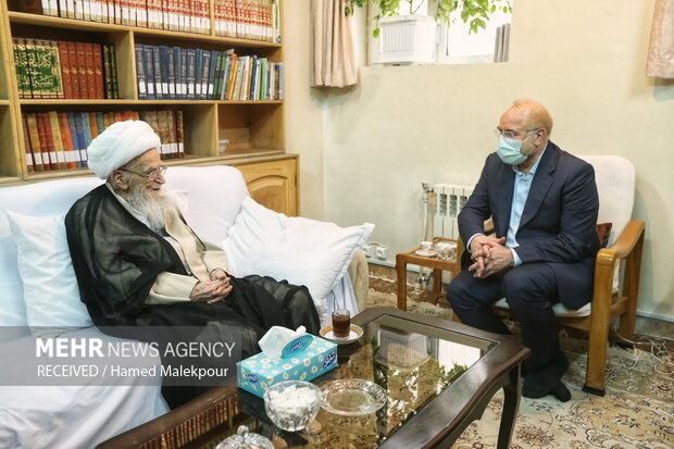 دیدار رئیس مجلس شورای اسلامی با مراجع تقلید قم