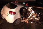 تصادف زنجیرهای ۳۰ دستگاه خودرو در آزادراه کرج - قزوین