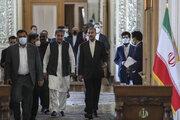 Iran, Pakistan FMs stress regional coop. for Afghan peace