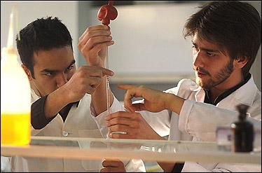 معرفی 20 دانشمند برتر ایرانی در علوم کشاورزی/ سهم دانشگاه ها از تحقیقات کشاورزی