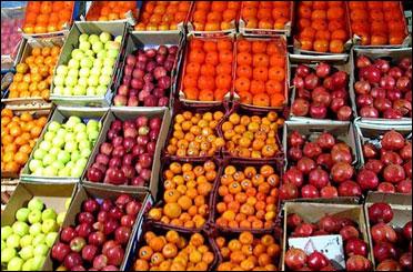 ذخیرهسازی ۸۰۰ تن پرتقال و سیب در استان بوشهر